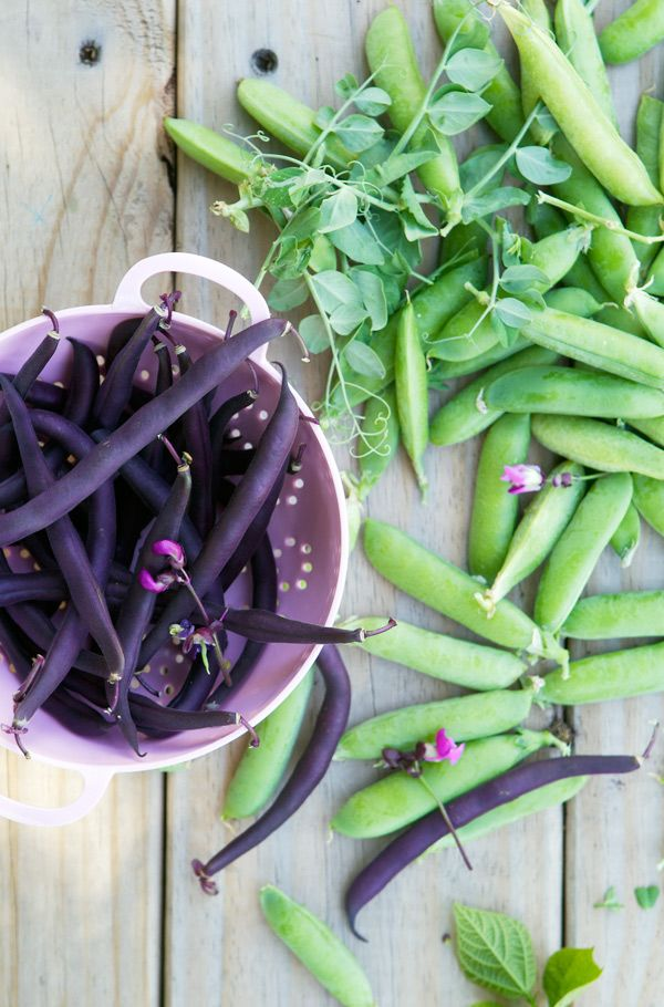 Green Peas and Purple Beans: Purple Beans, Gluten Free Desserts, Food, Green Beans, Colors Palettes, Colors Chips, Discover Colors, Healthy Desserts, Green Peas