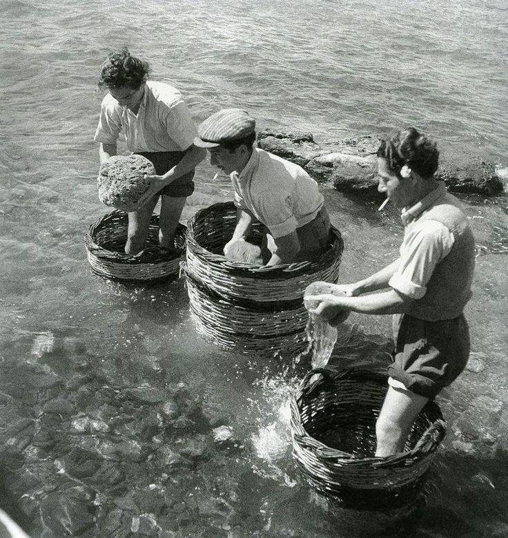 Σφουγγαράδες, Αίγινα, 1950-55 Φωτογραφία: Βούλα Παπαϊωάννου Φωτογραφικά Αρχεία Μουσείου Μπενάκη