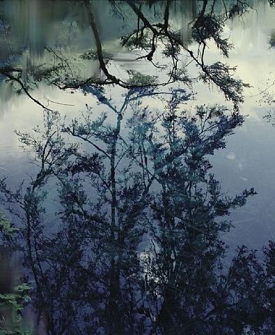 artnet Galleries: Untitled (Lake 5) by Sandra Kantanen from Purdy Hicks Gallery