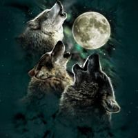 FlockboyLaylow Ft Bizzy - Wolves Of Wall St by Lay Lowhp on SoundCloud
