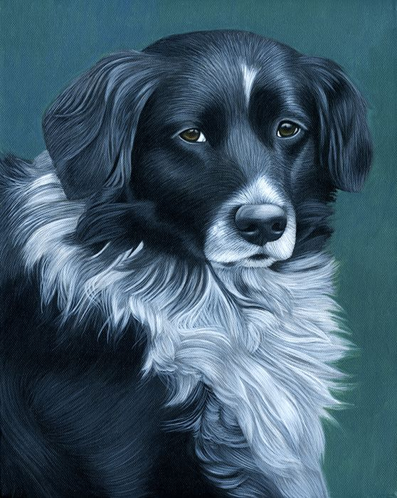 Free Acrylic Painting Lessons pet portraits | ... Disadvantages of Acrylic Paint | Pet Portraits by Melinda M. Golden