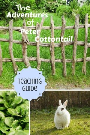 Homeschool and Classroom Activity and Lesson Ideas for The Adventures of Peter Cottontail by Thornton W. Burgess / Moral Lessons for Kids / Children Stories with Morals / Character Traits