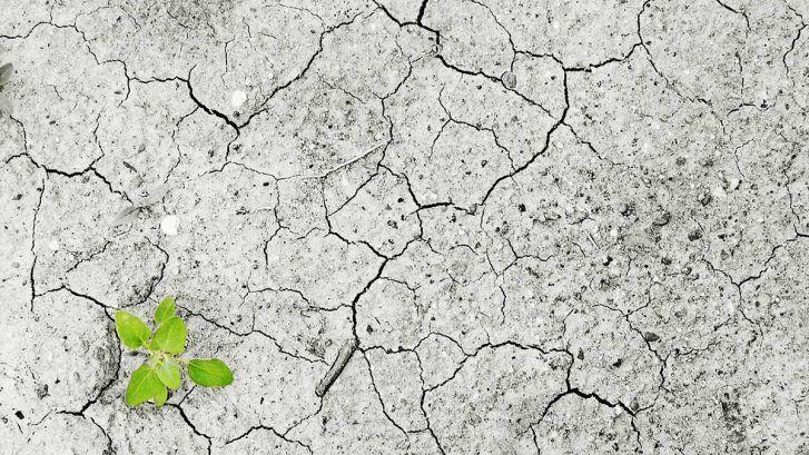 Cambiamenti climatici: aumentano i rischi per la salute