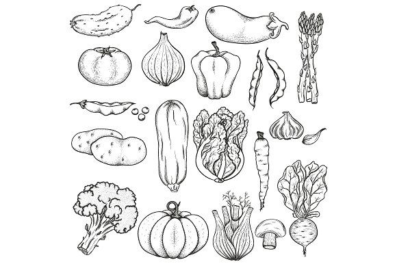Big Collection Of Vegetables Drawings How To Draw Hands Vegetable Drawing