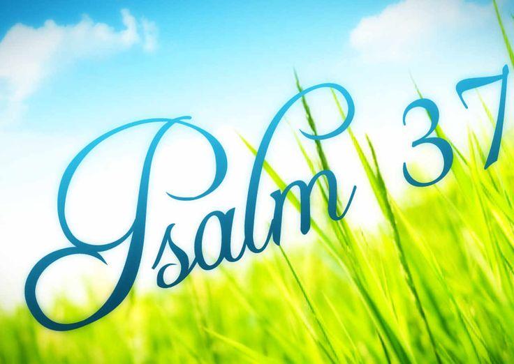 July 18th, 2017 - Psalm 37:4-5 - https://christiantruther.com/verses/july-18th-2017-psalm-374-5/