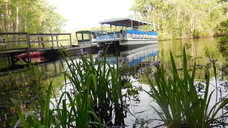 Waccamaw River Tours Nature & Boat Tours in Myrtle Beach