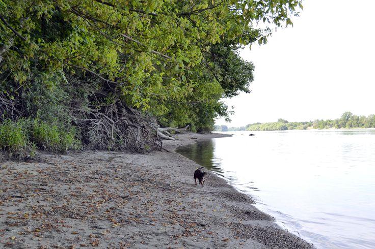 Alsógöd Duna-part