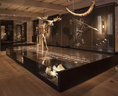 Best 25+ Museum displays ideas on Pinterest | Museum display cases ...