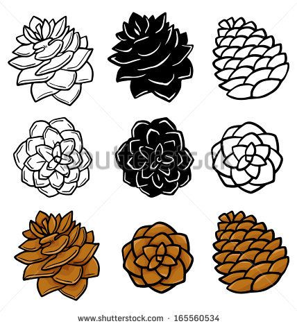 144 best pinecones images on pinterest pine cones water colors rh pinterest com free pine cone clipart christmas pinecone clipart