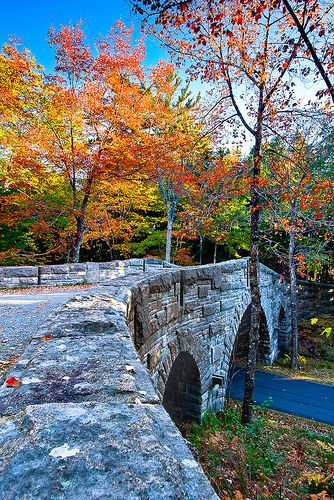 Enjoy a horse drawn ride on the Carriage Roads - Acadia National Park, Maine