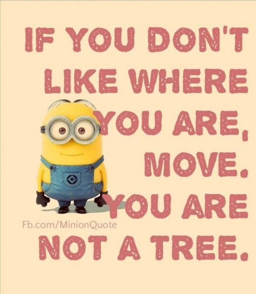 Today Funny Minions LOL pics (09:33:11 PM, Tuesday 09, June 2015 PDT) – 10 pics