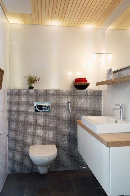Korkea wc:n seinäkotelo. Sisustus ideat - Suomalainen koti