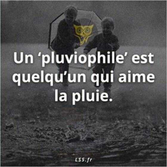 A pluviophile is someone who loves the rain.