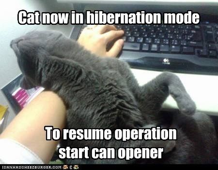 Works on Most Operating Systems