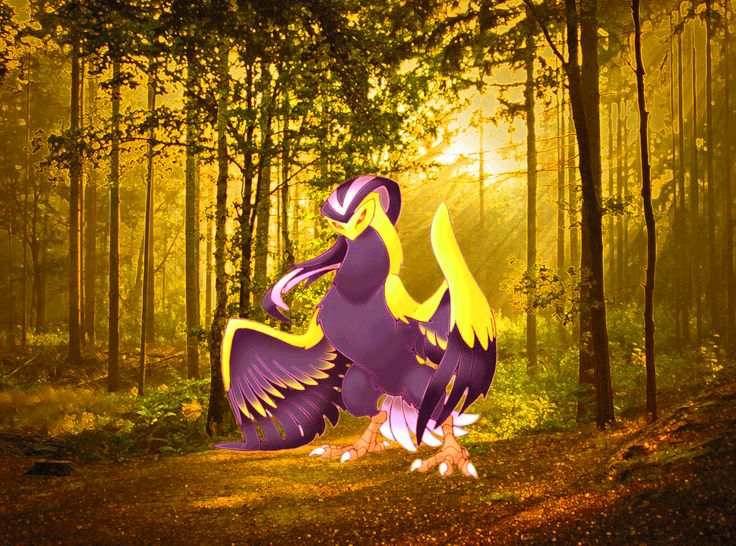 Pokemon Fusion- Beedrill and Pidgeot Fusion