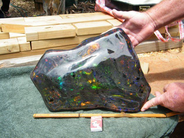 At 55,000 carats, this opal matrix recently found in the opal fields of South Australia is the world's largest. Discovered by Stuart Hughes and his partners, it is valued at over one million dollars...