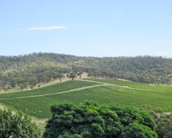 Pairing Food with the Wines of the Yarra Valley