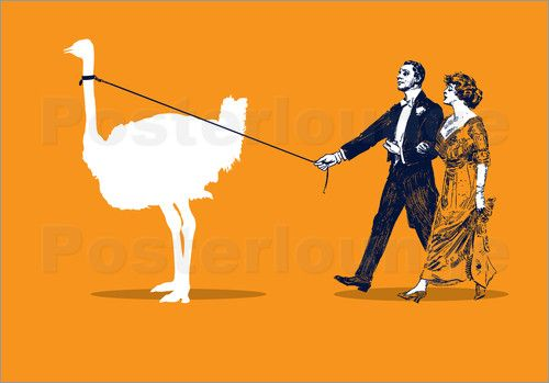 Poster Walking the Ostrich art | decor | wall art | inspiration | contemporary | home decor | ideas | gift