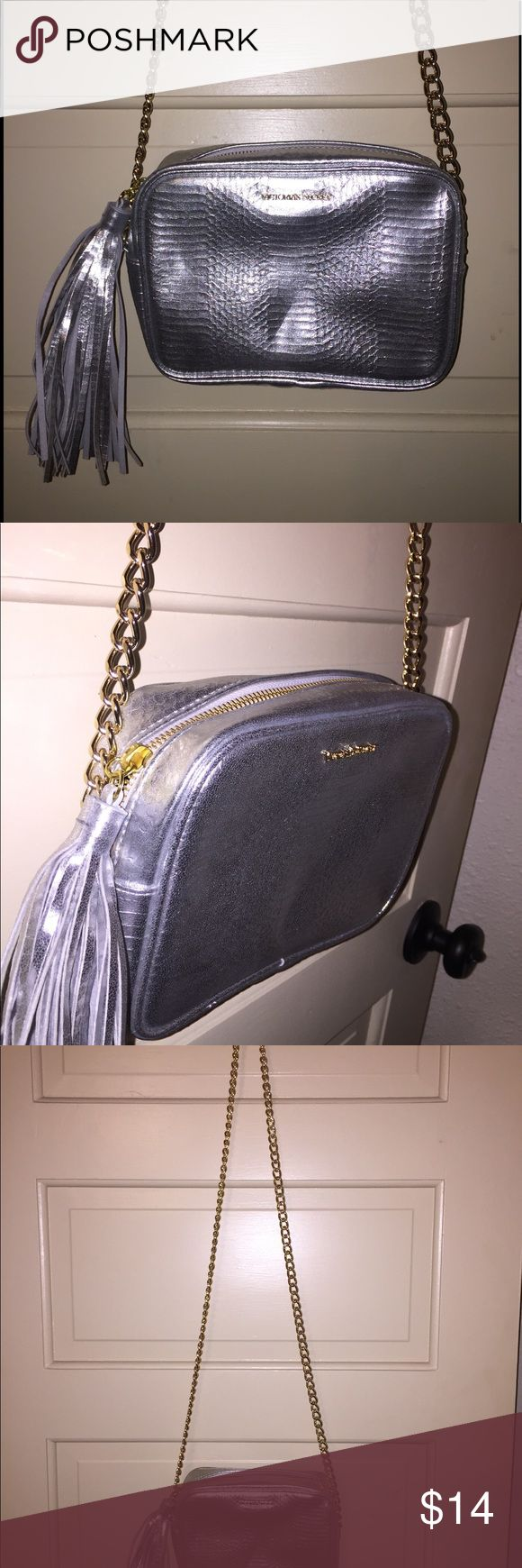 Silver Tassel Bag NWOT Small silver bag with tassel and long gold chain. Victoria's Secret Bags Crossbody Bags