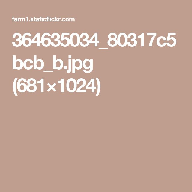 364635034_80317c5bcb_b.jpg (681×1024)
