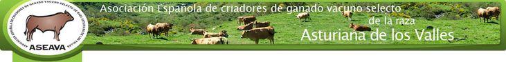 Raza Asturiana de los Valles (ASEAVA) - Presentación