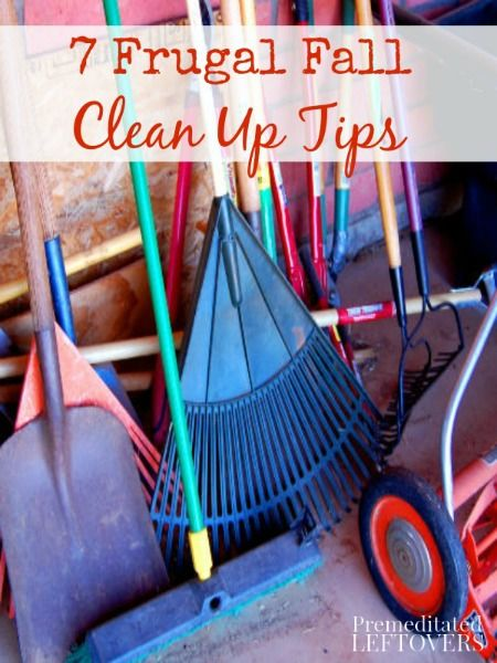 10 best fall clean up images on pinterest gardening for Fall yard clean up checklist