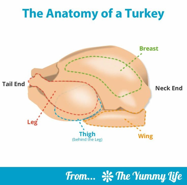 Step-by-Step Guide to The Best Roast Turkey. A tried-and-true recipe for making a perfectly cooked and moist turkey every time. Detailed photos and tips take away the guesswork for beginner and experienced cooks. From The Yummy Life.