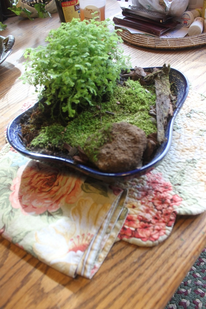 Image Detail For  Roundtop Ruminations: Ben With Moss Garden