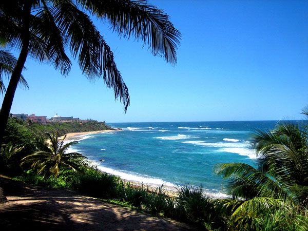NICE THINGS from puerto rico - Google Search