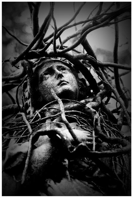 Thorns that Pierce Our Souls!-Part 1