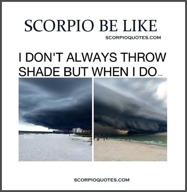 SCORPIO BE LIKE Collection Part 2 (13 Pics) | Scorpio Meme  ...#2 When someone says they don't like me ... #3 I Wear all black to remind you not to mess with me, because I'm already dressed for your funeral...#4 I sometimes open up to people...