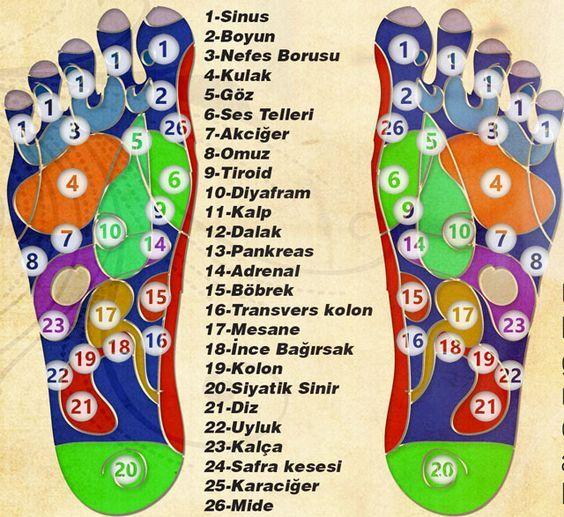 Tüm sinirler ayaklarımızdan geçer. Vücudunuzdaki negatif enerjiyi temizlemek ve huzurlu bir gün geçirmek için her akşam bir dakikalık ayak masajı uygulamalısınız.