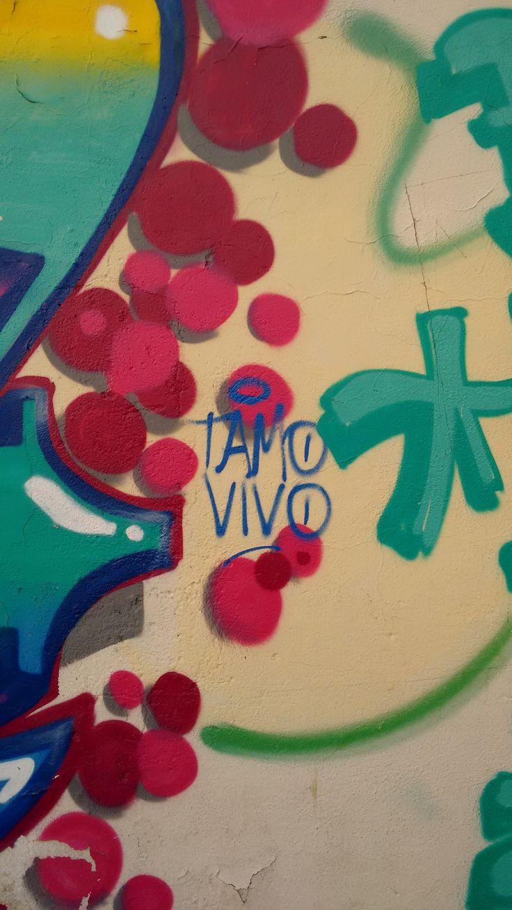 Existe uma linha tênue que separa o grafite da pichação, e a pichação do vandalismo. Que tal conhecer a diferença entre essas formas de comunicação urbana?
