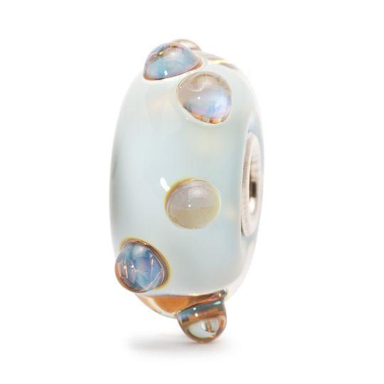 Luce di Luna 2016 €31  Su un letto color del cielo spuntano, come cristalli di ghiaccio, i boccioli d'azzurro lucente!