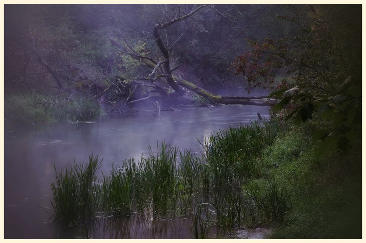 Pilica river.  Poland