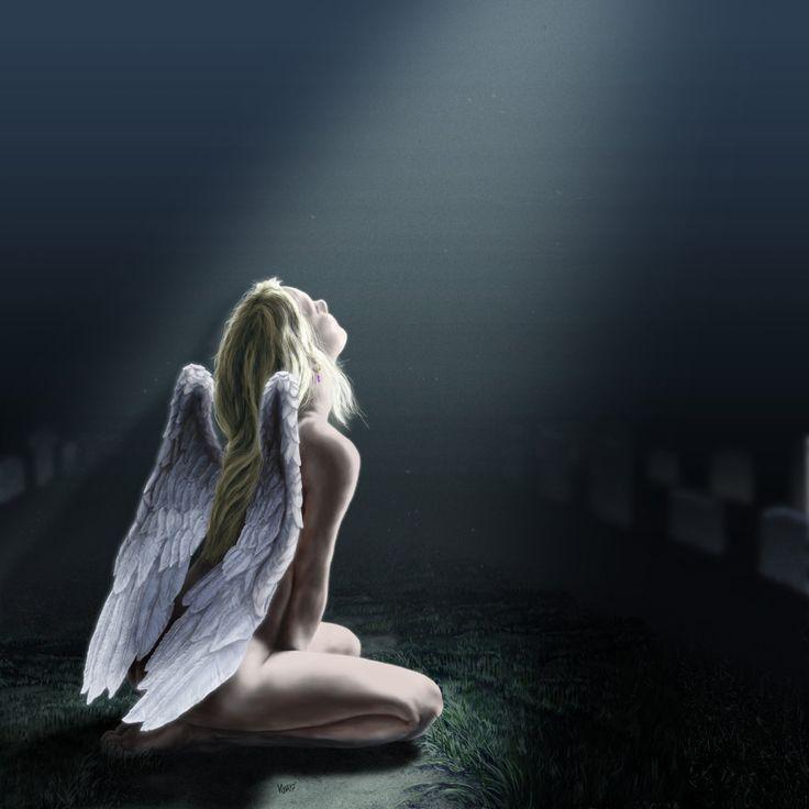 поговорим фото раненого ангела шоколадный