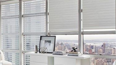 Blinds.com: Economy Light Filtering Horizontal Sheer Shade
