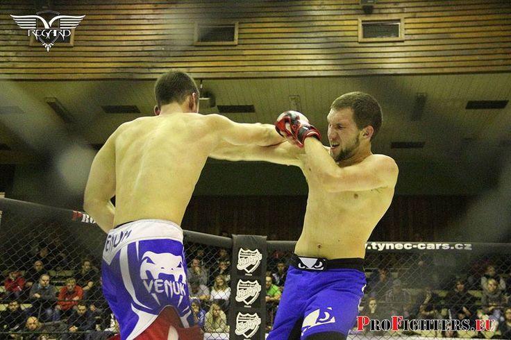 Mistrovství čr v MMA 2014