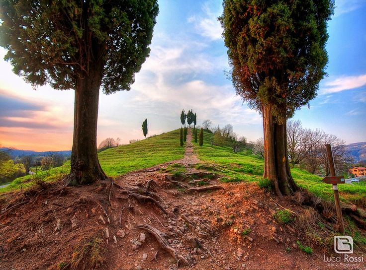 Mystic way by Luca Rossi // Montevecchia, Lombardy, Italy.
