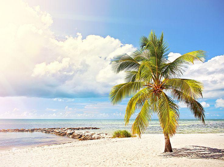 Sol, bad och roliga aktiviteter för barnen i Florida