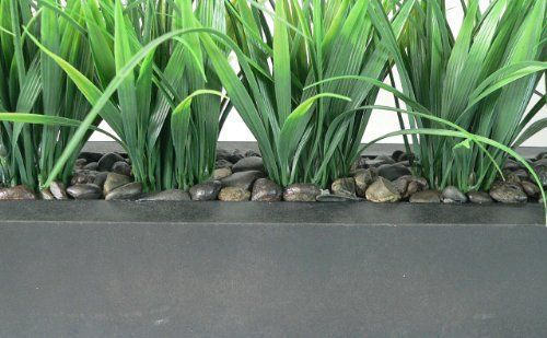 nice Laura Ashley Green Grass in Contemporary Wood Planter