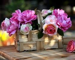 resultado de imagen de flores preciosas fotos - Fotos De Flores Preciosas
