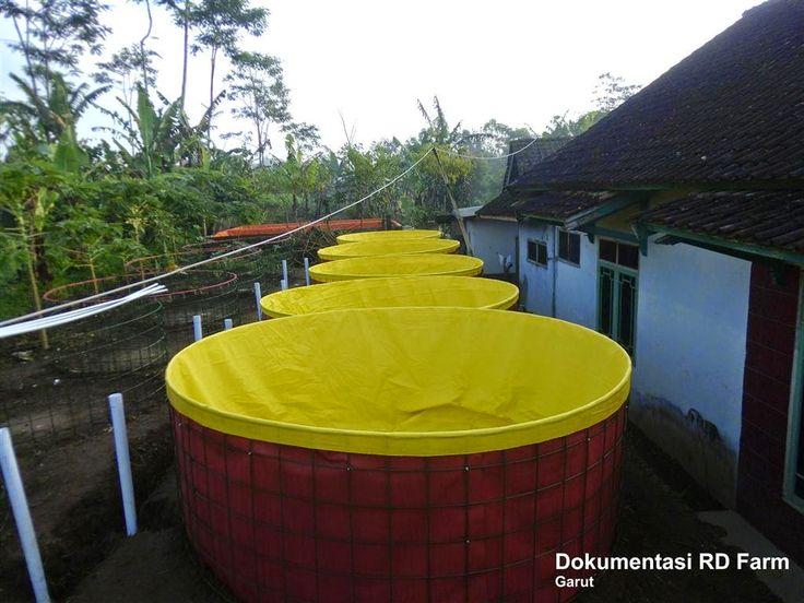 Postingan ini menjelaskan langklah-langkan membuat kolam bulat menggunakan rangka Wire-mesh.  Kenama Wire-mesh? karena pembuatan kolam bulat menggunakan Wire-mesh dapat mempercepat pengerjaan dan memangkas biaya produksi.