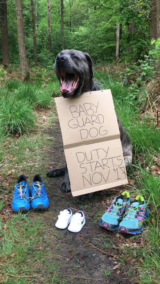 Zo hebben wij op moederdag 14-5-2017 onze aankondiging gedaan van onze zwangerschap. We hebben ons leven hierin betrokken met onze hond, onze trail schoenen en baby sportschoentjes op een trailpaadje in het bos.