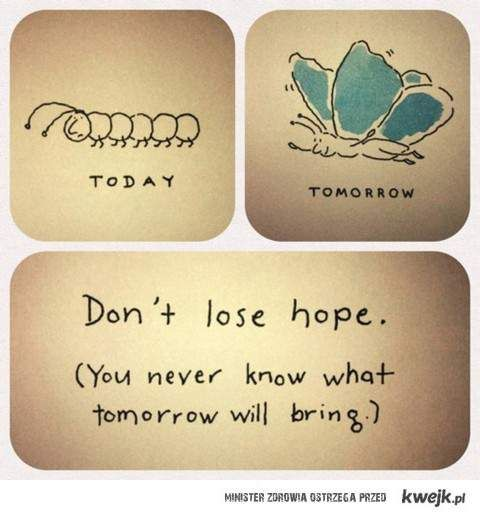 :): Life, Inspiration, Tomorrow, Quotes, Lose Hope, Don T Lose, Thought