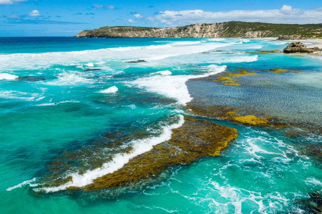 Australia's Secret Coastlines: Pennington Bay on Kangaroo Island, South Australia (Kangaroos and koalas in a rustic agricultural backdrop, striking seaside rock formations crafted by centuries of wind and waves, and the luxurious lifestyle of one of the world's top four hotels - Kangaroo Island, a short ferry ride off the coast of South Australia, is a must.)
