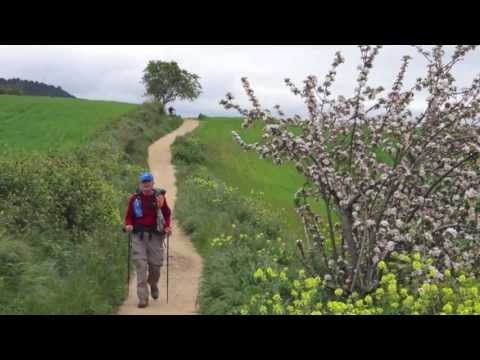 What's the Pilgrims Passport? on Camino de Santiago de Compostela - YouTube