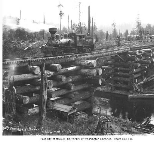 Apex Timber Company Shay Engine Number 5 on log jam trestle, ca. 1925 :: Kinsey Brothers Photographs of the Lumber Industry, 1890-1945
