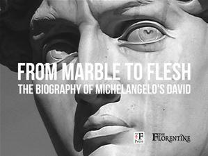 Michelangelo's Statue of David, New book with broad appeal #michelangelo #david #kickstarter