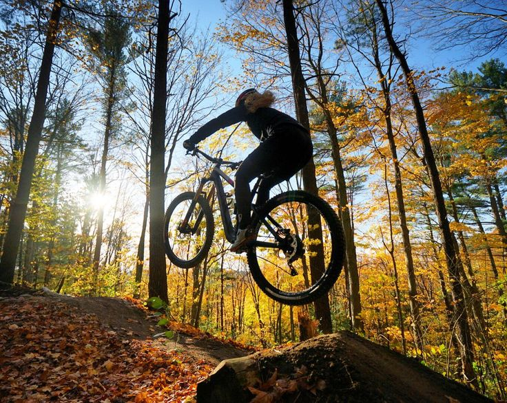3200 Best I Like Your Bike Images On Pinterest Biking Cycling